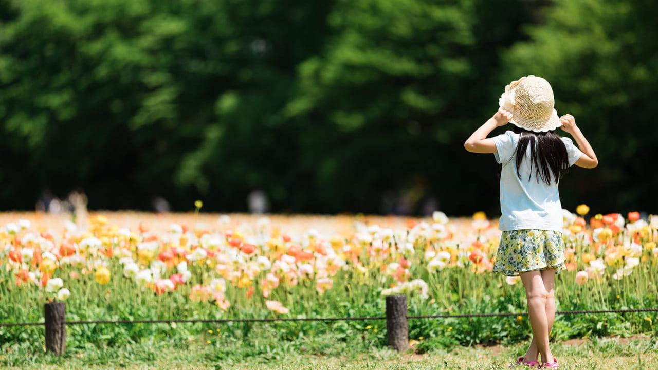 公園の女の子(画像イメージ)