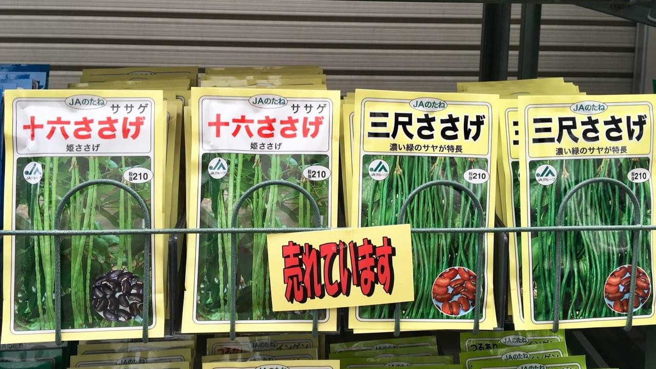 尾張地方の伝統野菜、ささげの種