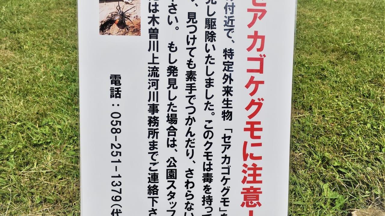138タワーパークのセアカゴケグモにご注意の看板