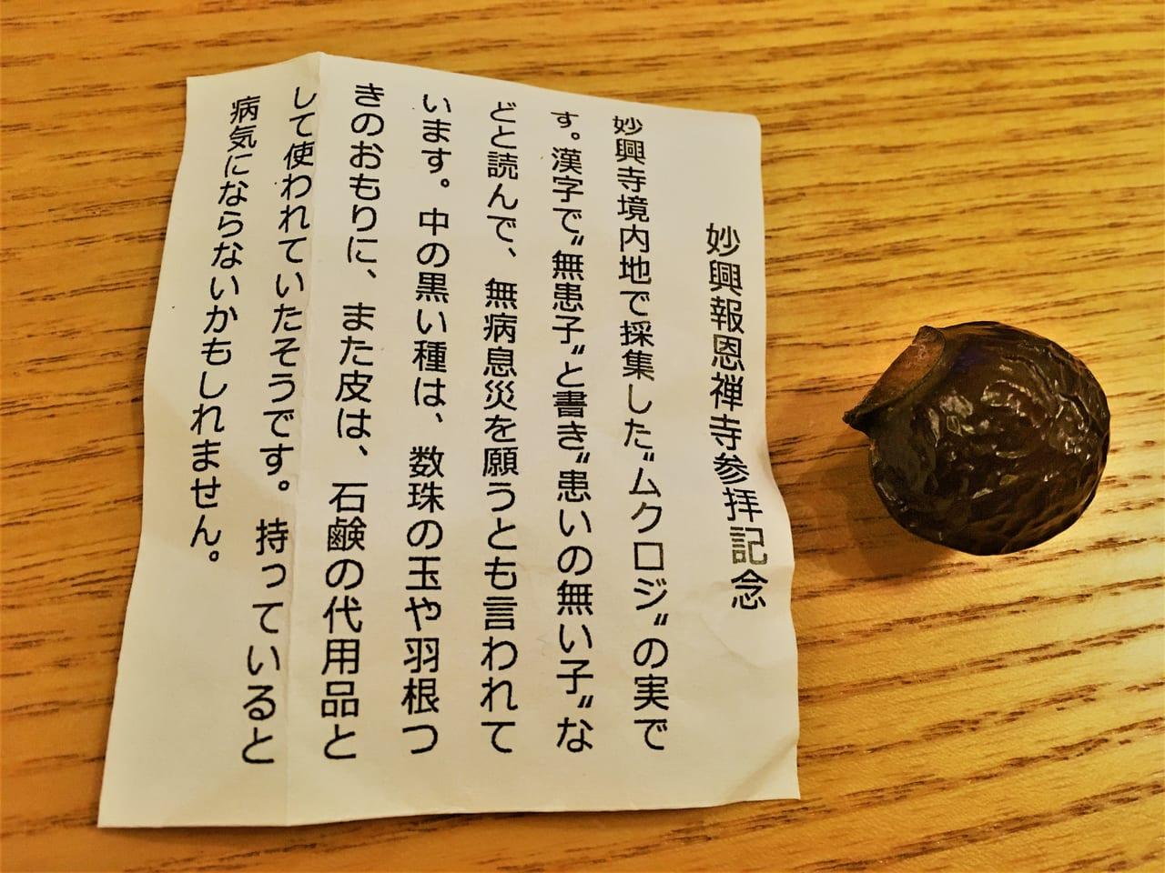 妙興寺で採れたムクロジ